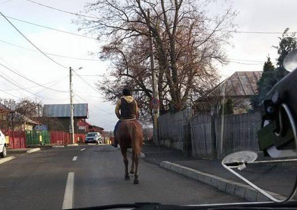 Un cowboy la Moinesti / foto: Ovidiu Dumitru Popa